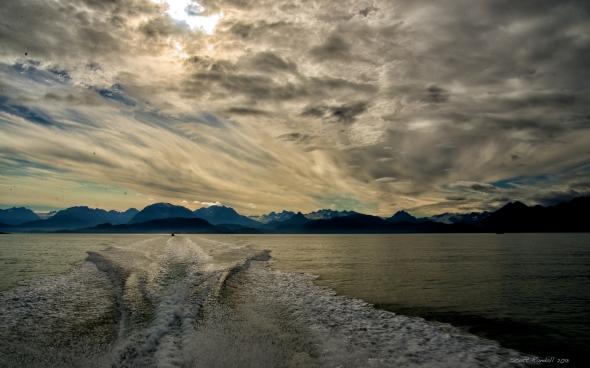 Kachemak Bay glory